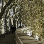 Couple walking along the Tiber